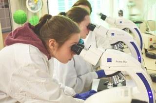 Mikroskopieren in der Kieler Forschungswerkstatt