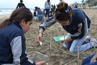 Dem Plastikmüll auf der Spur: Citizen-Science-Projekt gestartet