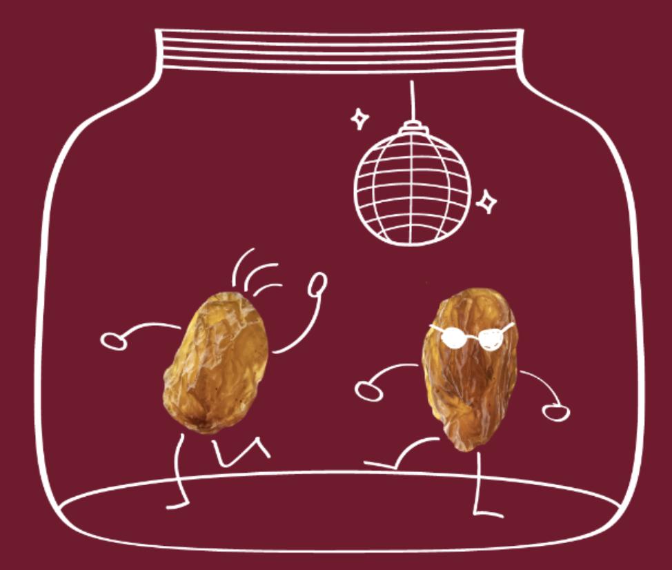 Tanzende Rosinen: die internationale PhysikOlympiade bei MintMagie des BMBF